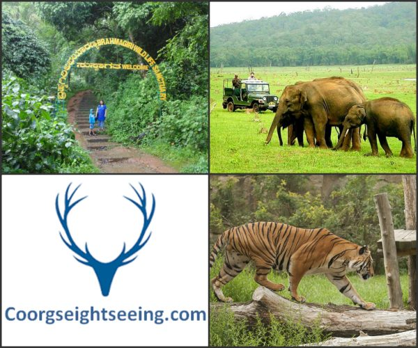 Places to Visit in Coorg In One Day | Coorg One day Tour